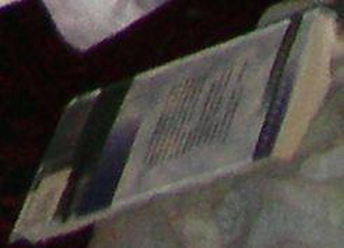 Kender du titlen på denne bog? Foto: Europol.