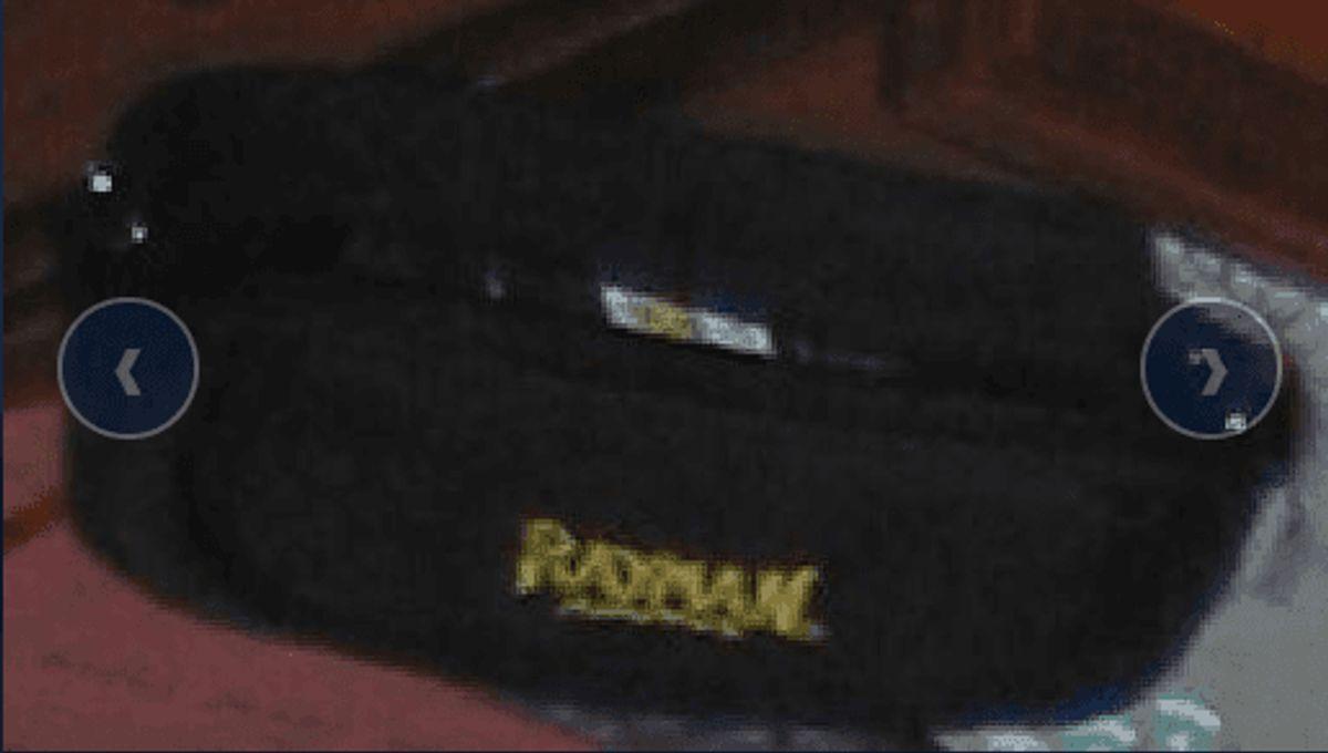 Dette er sandsynligvis en form for make-up-taske. Foto: Europol.