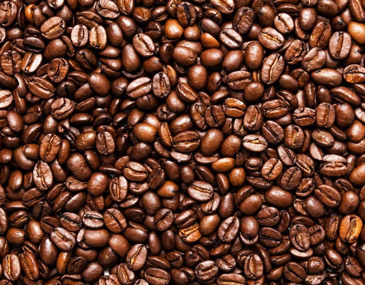 Kaffe bør ikke stå i en dåse på køkkenbordet. Når der først er åbnet for kaffebønnerne, skal de opbevares i køleskabet. Pak bønnerne godt ind, ellers tager de smag fra de andre ting på køl. Foto: Scanpix.