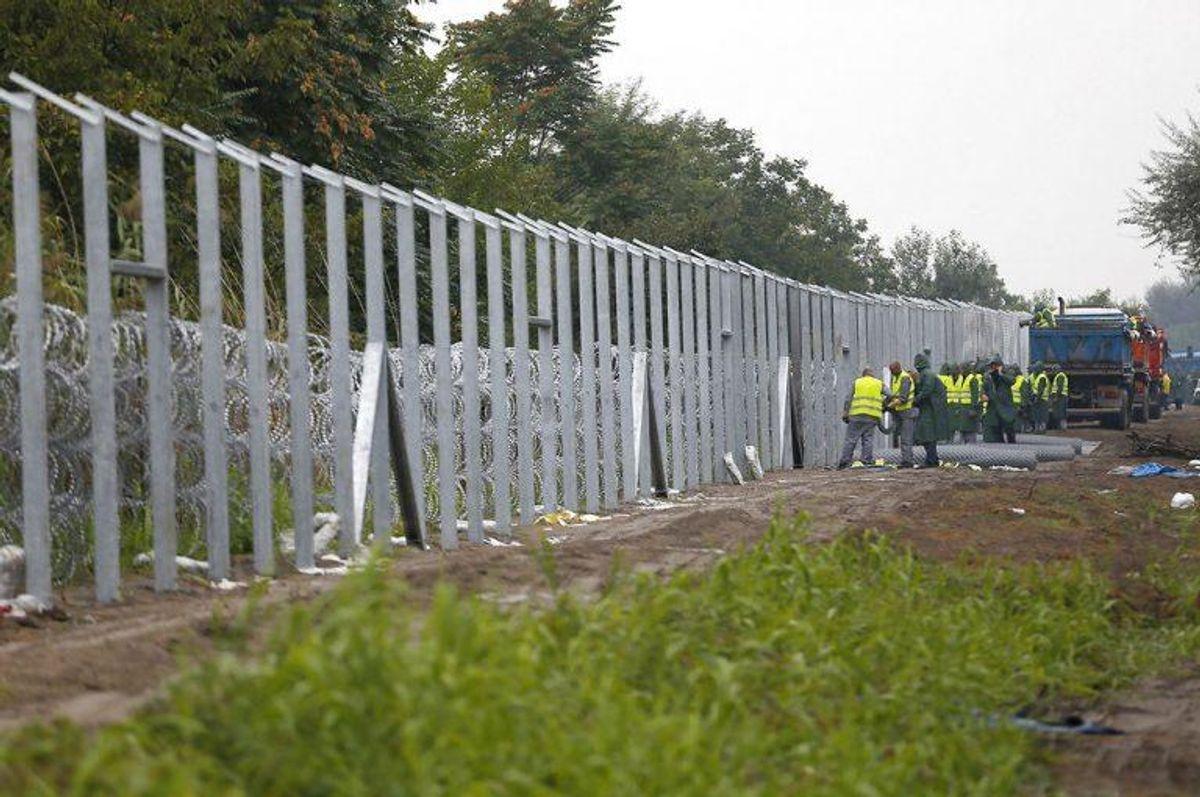 Dansk Folkeparti er inspireret af Ungarns grænsehegn mod Serbien. Foto: Laszlo Balogh/Scanpix