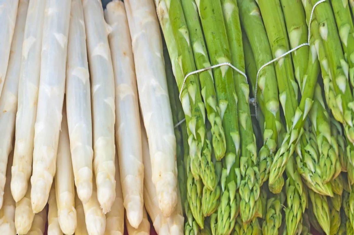 De grøntsager, som både kokke og private lige nu afventer i spænding, er særligt asparges, rabarber og kartofler. Foto: Colourbox.com (Modelfoto)