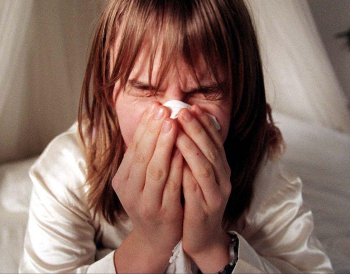 Er man trods medicin og forholdsregler så generet af pollenallergi, at man har problemer med at passe skole eller arbejde, bør man kontakte sin læge. Foto:  Henning Bagger/Ritzau Scanpix