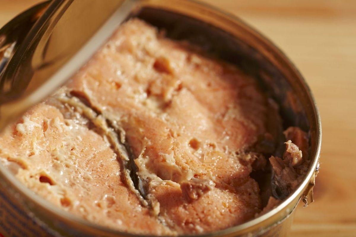 Du har sikkert prøvet at spise massevis af tun eller makrel på dåse, men hvis du vil have noget andet, så er laks eller sardiner på dåse et godt alternativ. Foto: Scanpix