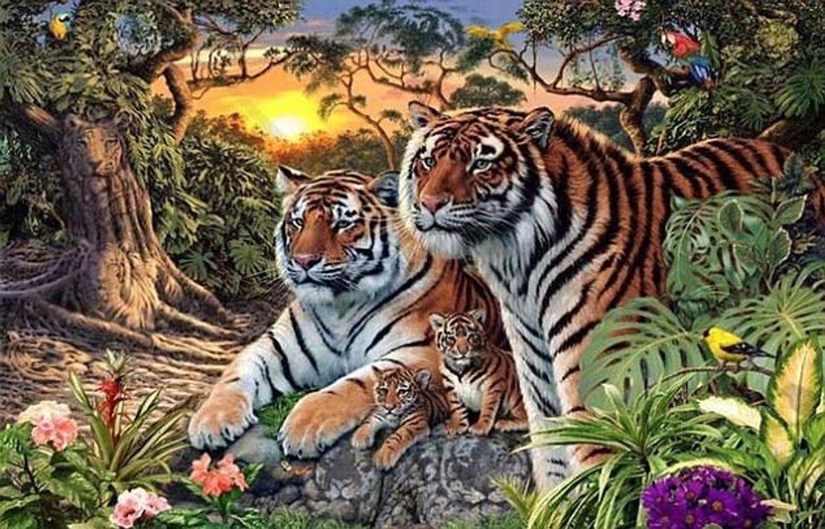 Kan du finde alle tigerne?