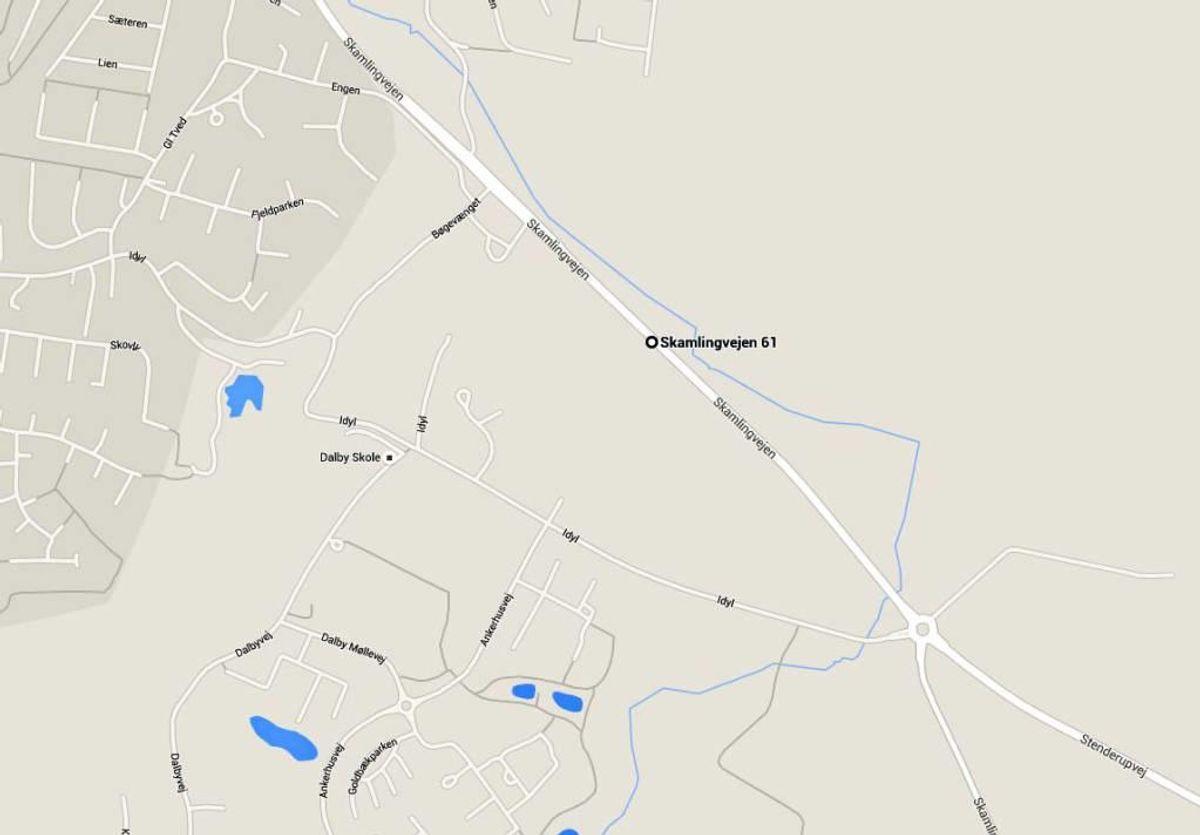 Voldtægten skete på Skamlingvejen mellem Rebæk og rundkørslen mod Agtrup. Foto: Google Maps.