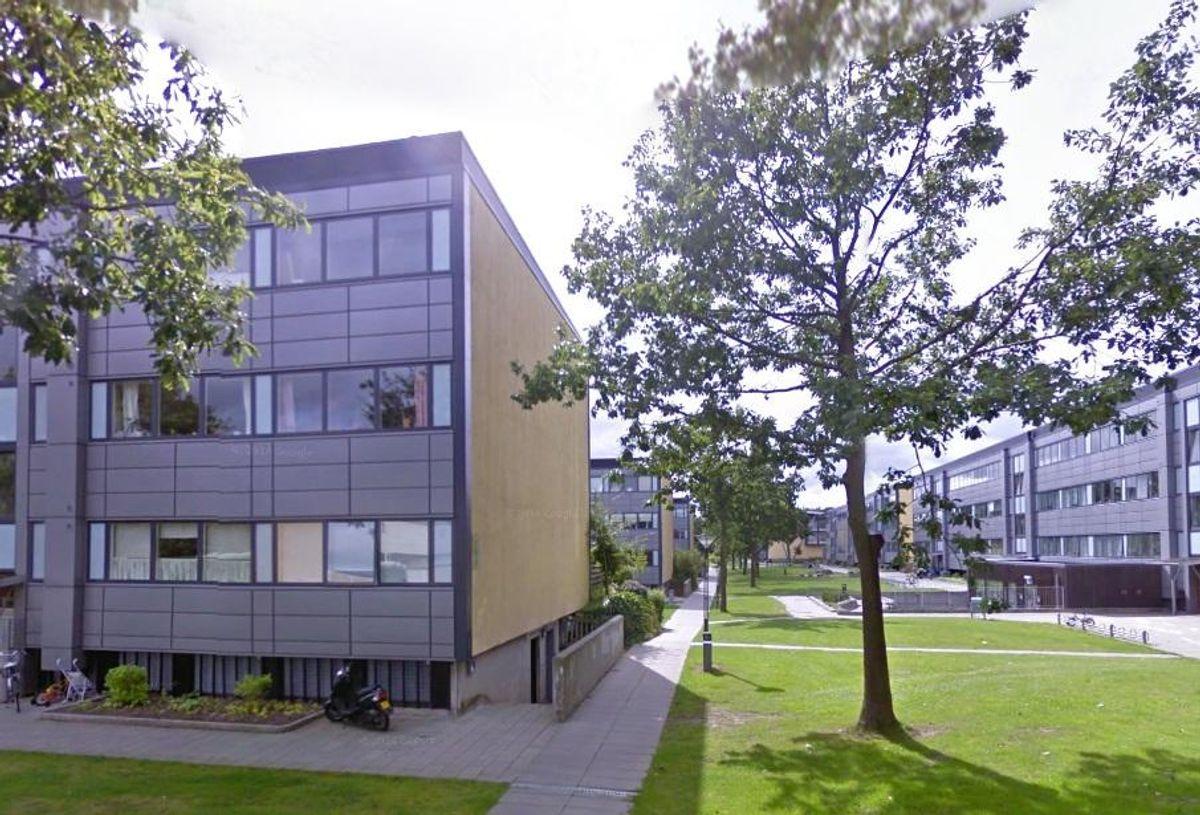 Lisbeth Maria Duelund fik afslag på at få en indboforsikring fordi hun bor i Skovparken i Kolding. Foto: Google Street View