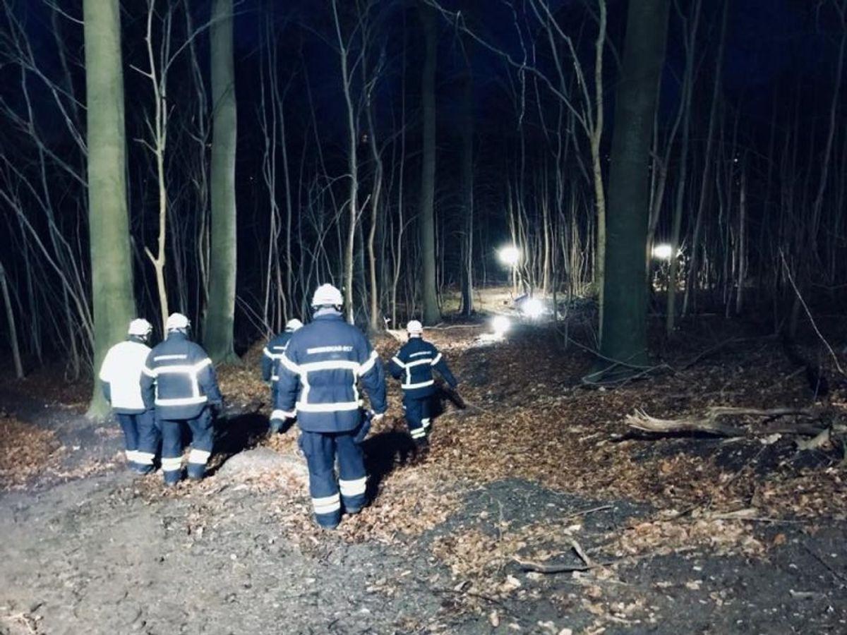Lysopsætning i skovområde (billede fra øvelse). Foto: Beredskab Øst.