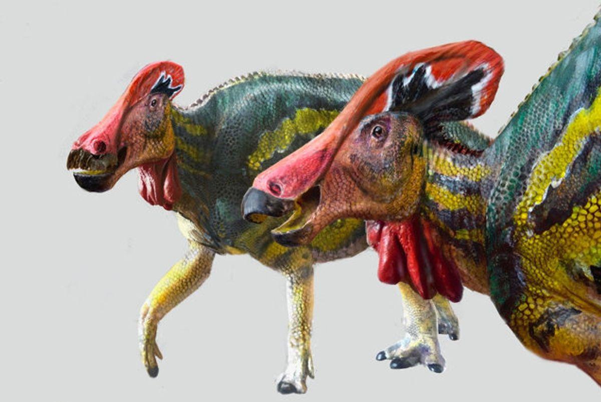 Sådan kan Tlatolophus galorum have set ud, da den levede for mere end 72 millioner år siden, mener forskerne. Foto: Inah/Reuters