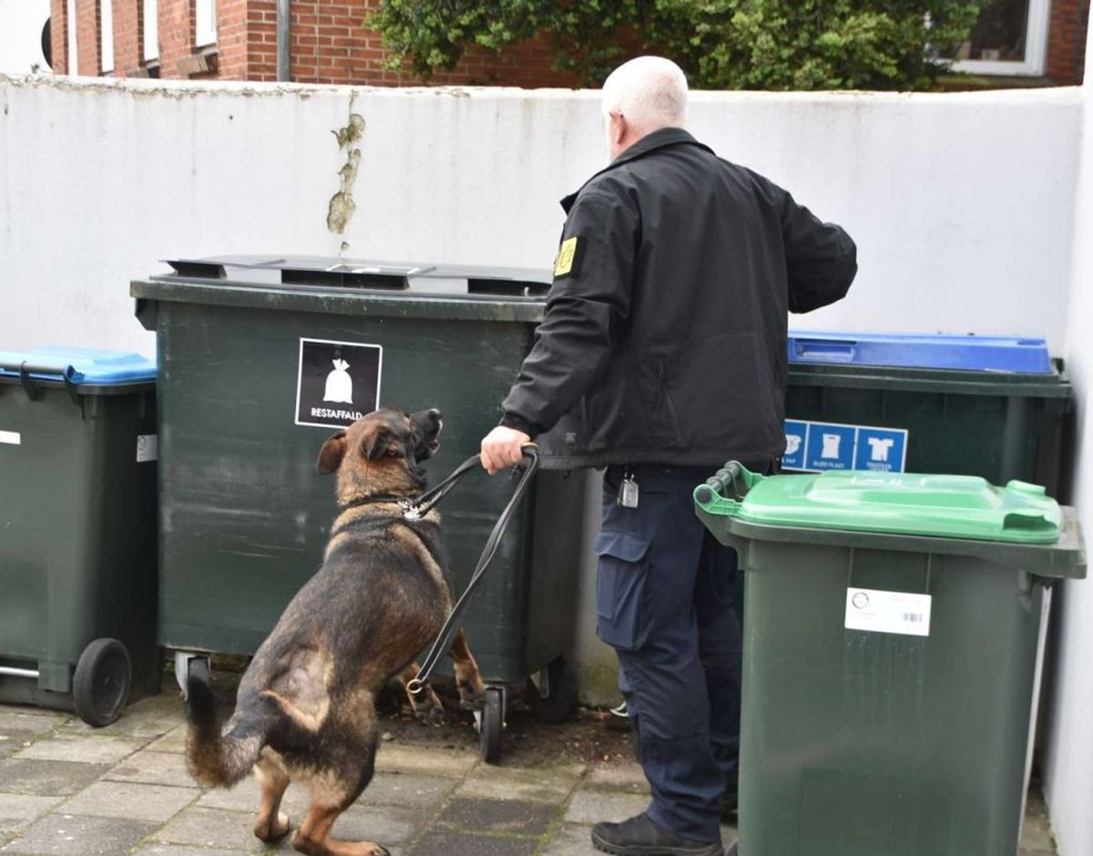 To er anholdt i en politiaktion efter melding om husspektakler. Foto: Øxenholt Foto