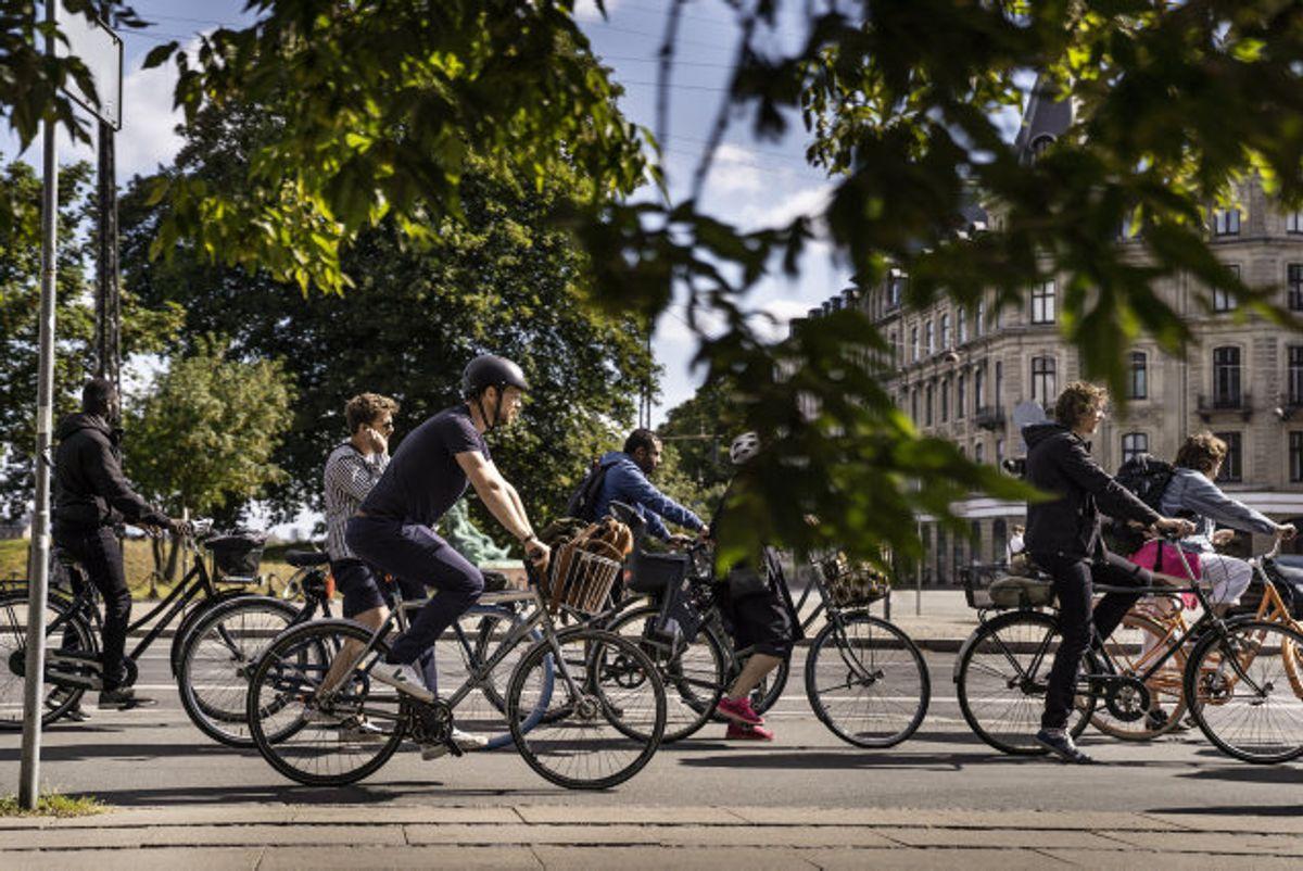 I perioden 2015 til 2019 er 350-400 cyklister årligt kommet alvorligt til skade eller blevet dræbt i et kryds. Det viser tal fra Rådet for Sikker Trafik. (Genrefoto) Foto: Thomas Lekfeldt/Scanpix