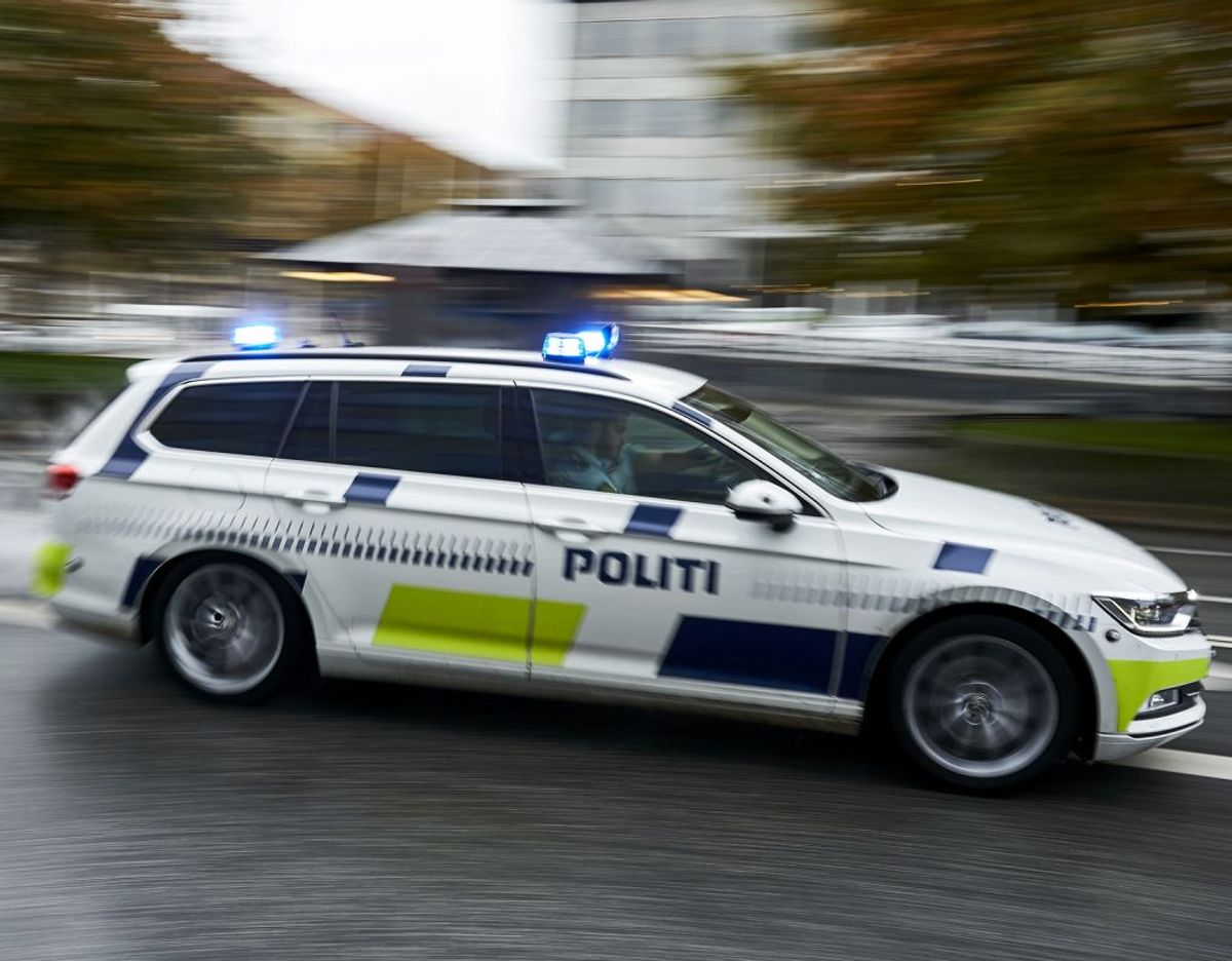 En vred hundelufter er sigtet for grov vold, efter han tog kvælertag på en 69-årig kvinde. Foto: Bonnerup Claus/Ritzau Scanpix