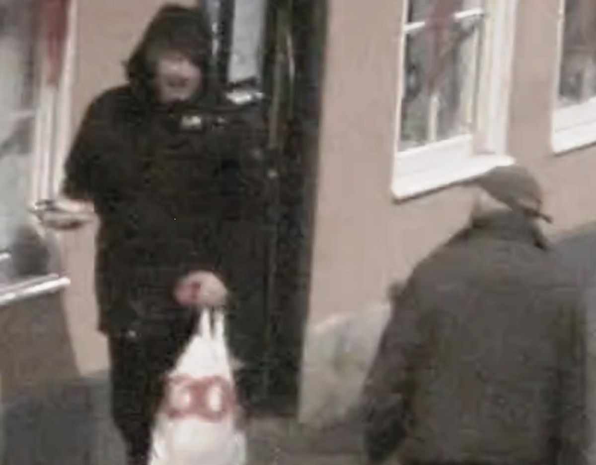 Det er denne mand, der efterlyses for hærværket. Foto: Politiet.