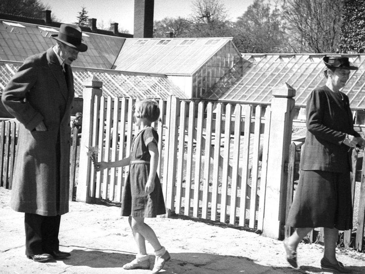 1942: Kong Christian den 10. modtager under en spadseretur med sin kone Dronning Alexandrine i Sorgenfri blomster af en lille pige. Foto: SCANPIX