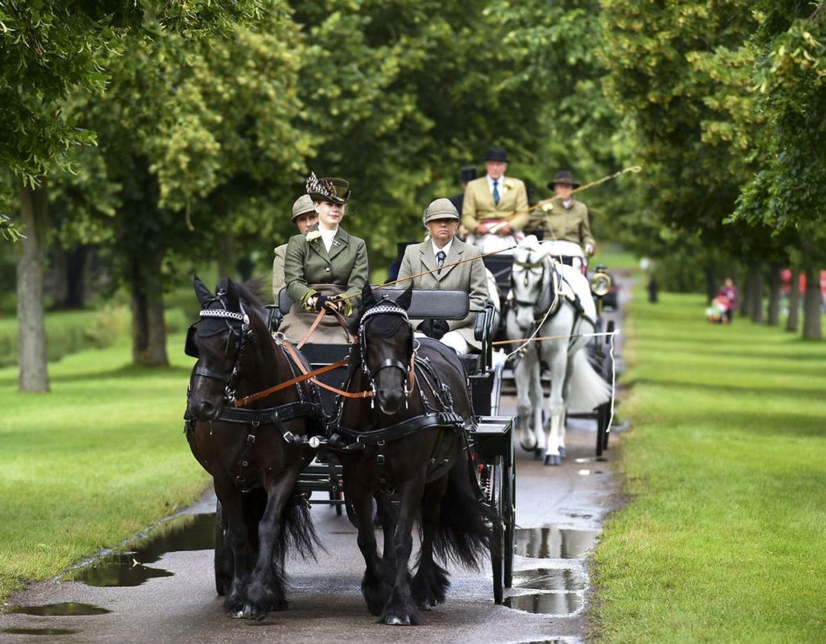 Lady Louise Windsor i sin farfars favoritkaret ved The Royal Windsor Horse Show søndag den 4. juli. Foto: Scanpix/Images/Polaris)