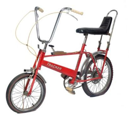 Denne cykel kørte Diana på som barn. Nu er en på auktion.