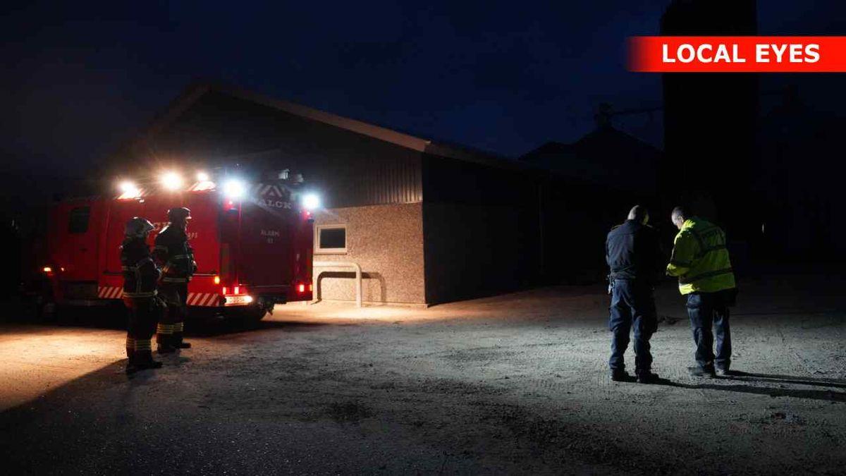 En brand i en staldbygning øst for Glamsbjerg har kostet 150 grise livet. Foto: Local Eyes
