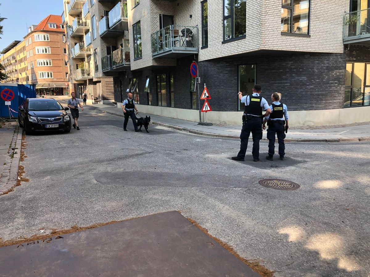 Politiet er talstærkt til stede. Foto: Presse-fotos.dk