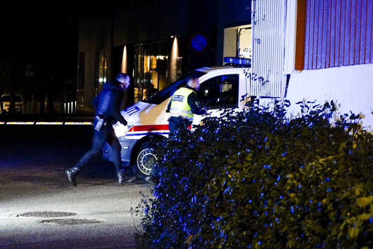 Politiet undersøger en række gerningssteder.